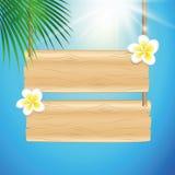 Spazio in bianco che appende segno di legno con i fiori tropicali del frangipane ed il fondo soleggiato del cielo con foglia di p illustrazione di stock