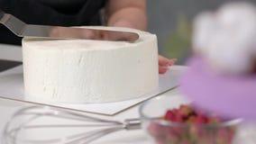 Spazio in bianco cilindrico regolare bianco del dolce Il confettiere crea la forma di una spatola della pasticceria video d archivio