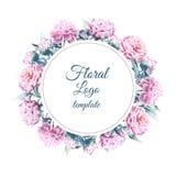 Spazio in bianco per il logo floreale rosa rotondo della peonia di progettazione isolato su bianco Immagine Stock
