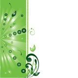 Spazio in bianco verde Fotografia Stock Libera da Diritti