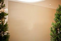 Spazio in bianco bianco vuoto del pavimento della parete interna della stanza aperto nessuno spazio di legno della luce della fin Immagini Stock Libere da Diritti