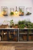 Spazio del giardino in terrazzo domestico fotografia stock