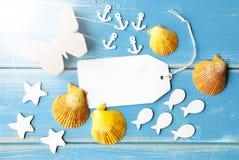 Spazio della copia del testo di Sunny Summer Greeting Card With Immagini Stock Libere da Diritti