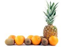 Spazio della copia dell'ananas fotografia stock