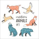 Spazio vettoriale messo con gli animali cosmici Animali disegnati a mano della stella nello stile dei pantaloni a vita bassa Fotografia Stock