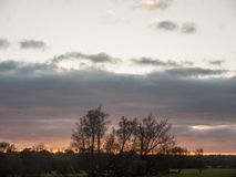 Spazio vuoto stabilito del sole del paese del cielo degli alberi di autunno del paesaggio Immagini Stock