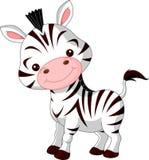 Spaßzoo. Zebra Lizenzfreie Stockfotos