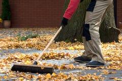 Spazzare le foglie Fotografie Stock Libere da Diritti
