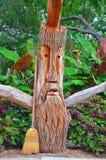 Spazzata dell'albero Fotografia Stock