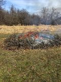 Spazzola bruciante con le fiamme ed il fumo fotografia stock libera da diritti