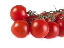 Spazzola dei pomodori maturi Immagini Stock