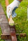 Spazzola del tubo della pittura della mano con pittura Fotografie Stock Libere da Diritti