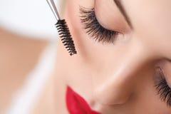Spazzola della mascara. Occhio della donna con i cigli lunghi.