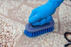 Spazzola di pulizia del tappeto fotografia stock libera da diritti