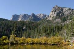 Spazzola e pini lungo Fern Lake Horizontal fotografia stock