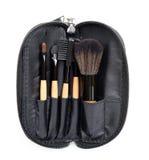 Spazzola professionale di trucco nella borsa dello zip raccolta delle spazzole su fondo bianco Immagini Stock
