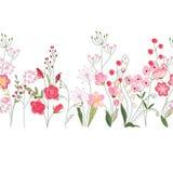 Spazzola senza cuciture del modello con le erbe, le rose ed i fiori selvaggi Struttura orizzontale senza fine Fotografia Stock Libera da Diritti