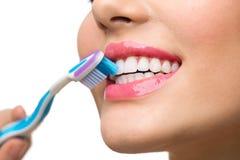 Spazzolatura di denti Denti sani bianchi fotografie stock libere da diritti