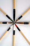 Spazzole di calligrafia Immagine Stock