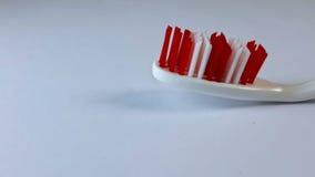 Spazzolino da denti Immagini Stock