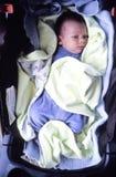 spädbarn Arkivfoton
