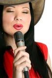 spełnianie piosenkarz Fotografia Stock