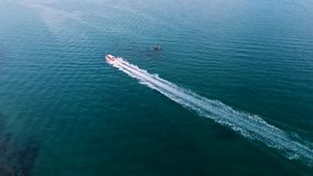 Speadboat-Segeln im blauen Meerwasser HD-Antenne folgen Schuss Phuket, Thailand stock video footage