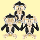 Speak no Evil, Hear no Evil, See no Evil Stock Photography