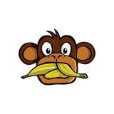Speak no evil monkey Stock Photo