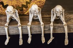 Speak no evil See no evil Hear no evil skeletons sitting on edge of a table with giant scarey metal pumpkin mouth behind them for. Halloween royalty free stock photography