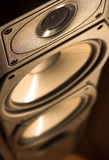 Speaker. Photograph of a Free Standing Speaker Royalty Free Stock Photography