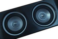Speaker. Close-up Royalty Free Stock Photos