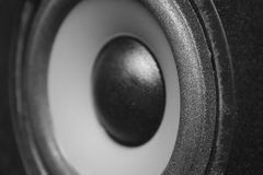 Speaker closeup. Speaker close-up. Black and white Stock Images