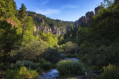 Spearfish Canyon. A view of Spearfish Canyon in South Dakota stock images