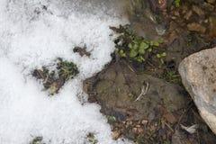 Καλυμμένη χειμώνας κοιλάδα σε Spearfish, SD Κλειστή στάση υπολοίπου στοκ εικόνα