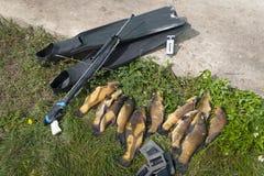 spearfishing λευκό εξοπλισμού ανασκόπησης στοκ εικόνες με δικαίωμα ελεύθερης χρήσης