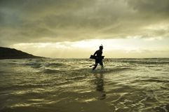 Spearfishing Royalty Free Stock Images