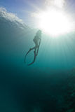 Spearfishing on the reef Royalty Free Stock Photography