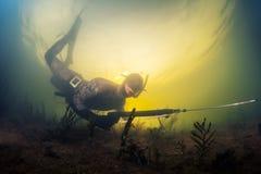 Spearfishing Royalty Free Stock Image