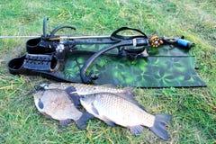 spearfishing Unterwassergewehr, Flossen und Fische auf dem Gras an lizenzfreie stockfotos