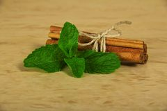 Spearmint with cinnamon Royalty Free Stock Image