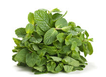 Spearmint herb Royalty Free Stock Photo
