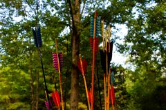 Spears For Atlatl. Spears to be used in an Atlatl Competition in the forest stock photos