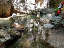 Specchio d'acqua i forra Royaltyfri Fotografi