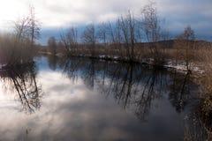 Specchio dell'albero al fiume immagini stock