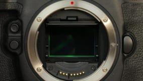 Specchio della macchina fotografica di DSLR stock footage
