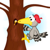 Specht op boom vector illustratie