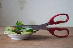 Special örtsax med åtskilliga blad Grön persilja som in klipps Arkivbild