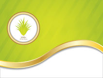 Special aloe vera background Royalty Free Stock Images