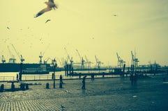 Special atmosfär på fiskmarknaden i hamburg med en sikt av hamnen royaltyfri foto